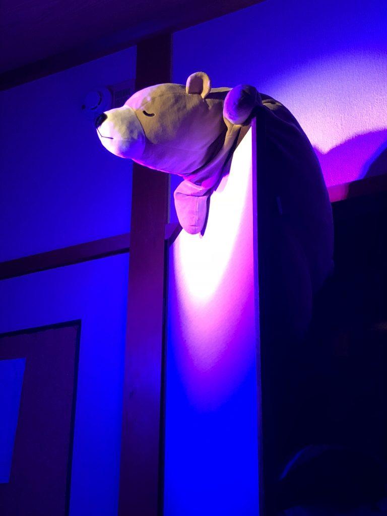 クマに光を当ててる画像